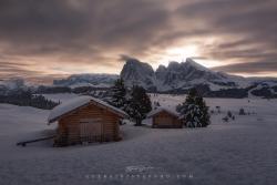Alpe di Siusi alba by Guerrini Stefano
