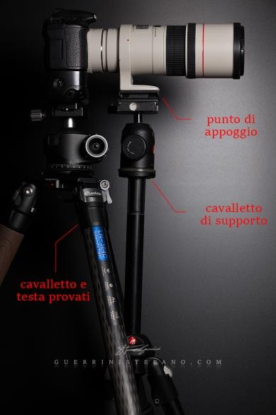 Test-carico-sbilanciato-by-Guerrini-Stefano-Leofoto-Lh-55-Ln-364C-Manfrotto-055pro-468mgrc4-488rc4