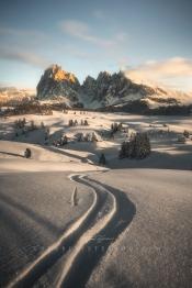 follow the path alpe di sius - seiser alm guerrini stefano
