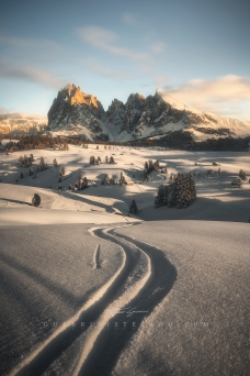 follow the path alpe di sius - seiser alm guerrini stefano