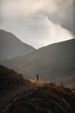 Light over Garda Lake