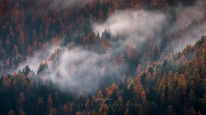 Autunno Trentino Guerrini Stefano