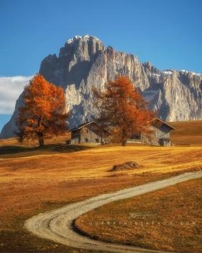 Autunno-Alpe-di-Siusi-by-Guerrini-Stefano